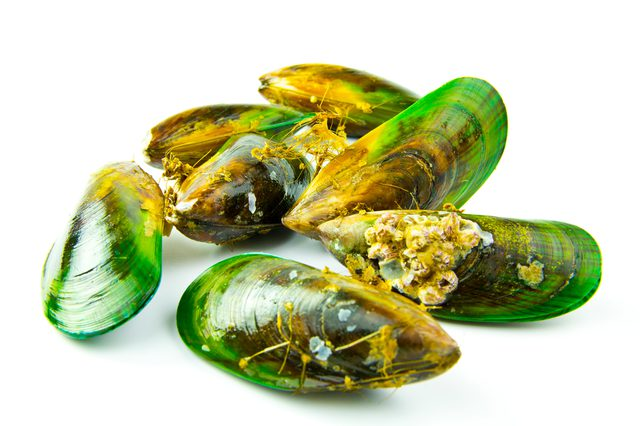 scoica cu cochilie verde