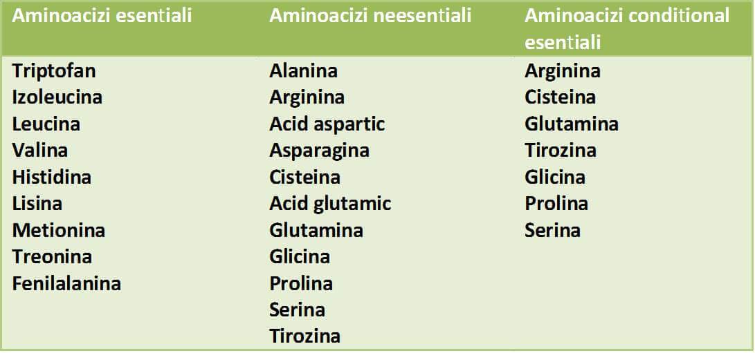 clasificarea aminoacizilor