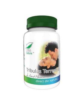 Tribulus Terrestris, 60 capsule, Pro Natura