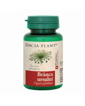 Branca ursului, 60 capsule, Dacia Plant